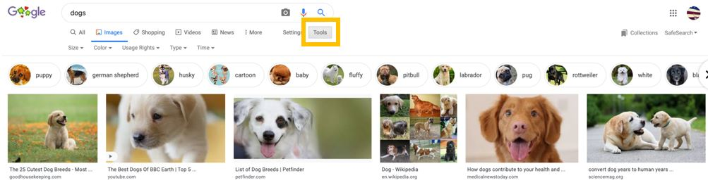 google-image-search-for-dogs-.jpg