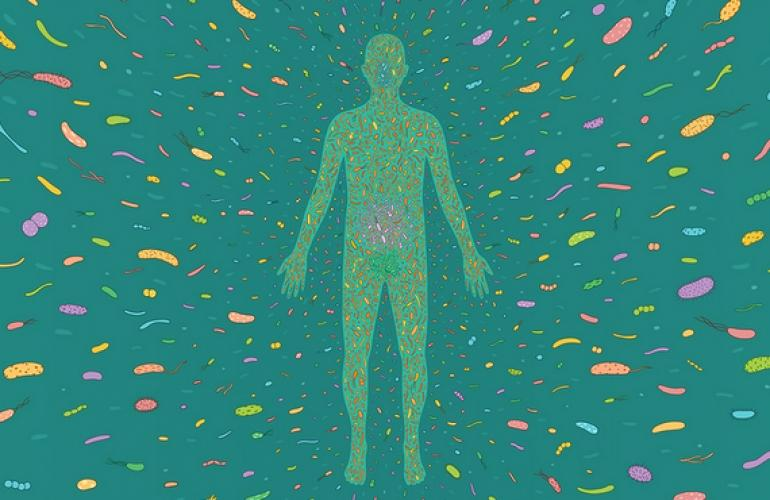 A Microbiome Search Engine for Disease Diagnostics