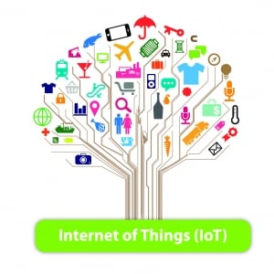 The Growing Importance of the Internet of Things